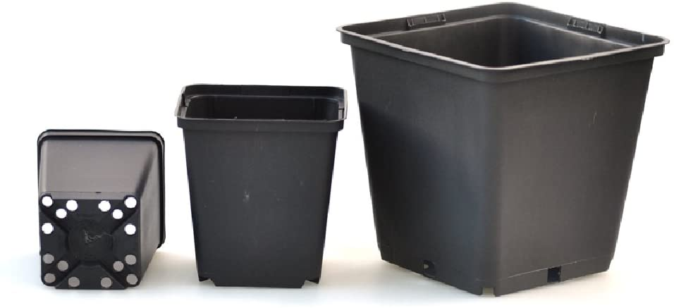 Picture of black 1ltr plant pots