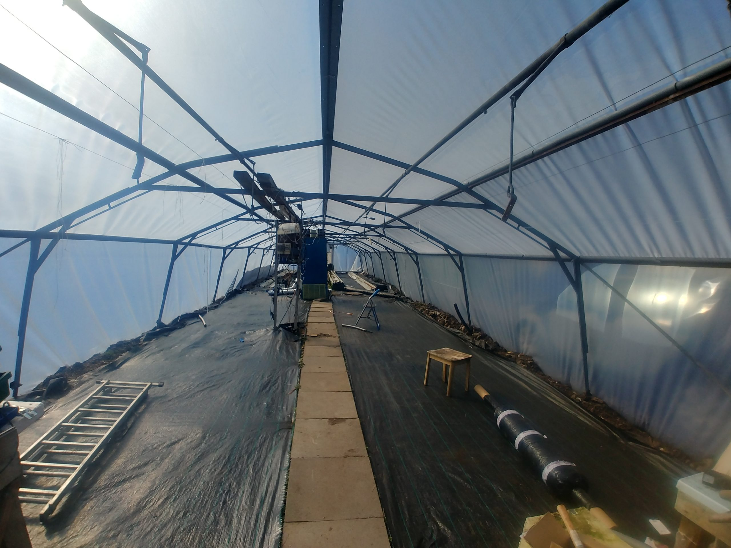 Heated Greenhouse has new lease on life